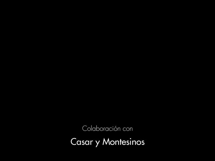 CASAR Y MONTESINOS